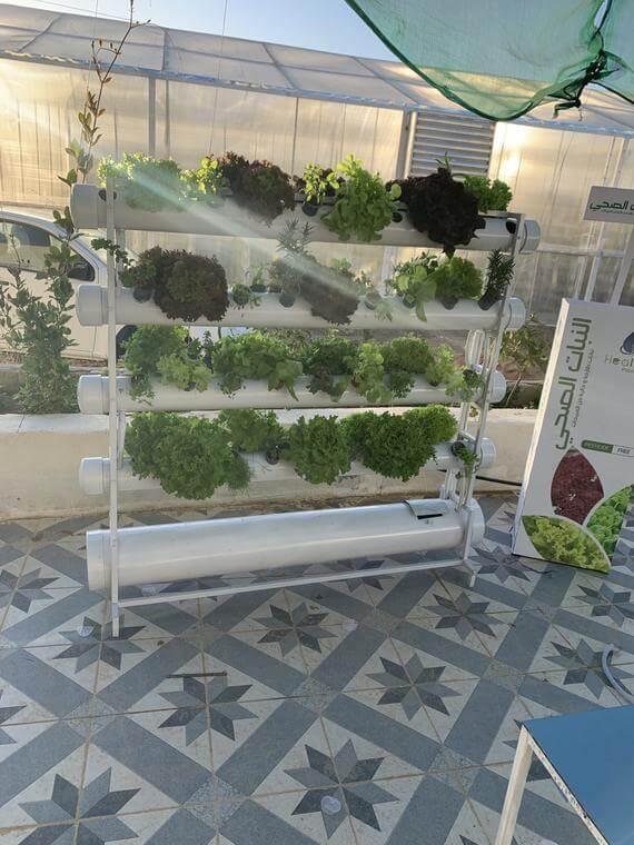 الزراعة المائية من هيلث بلانت