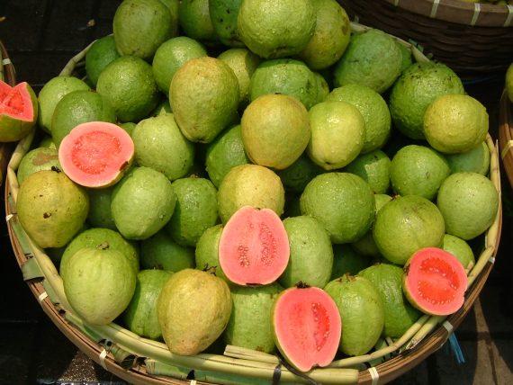 الجوافة الافريقيه